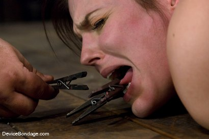 Photo number 8 from Bobbi Starr<br>Hogtie Hell shot for Device Bondage on Kink.com. Featuring Bobbi Starr in hardcore BDSM & Fetish porn.
