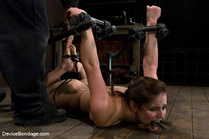 Photo number 14 from Bobbi Starr<br>Hogtie Hell shot for Device Bondage on Kink.com. Featuring Bobbi Starr in hardcore BDSM & Fetish porn.