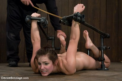 Photo number 6 from Bobbi Starr<br>Hogtie Hell shot for Device Bondage on Kink.com. Featuring Bobbi Starr in hardcore BDSM & Fetish porn.