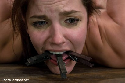 Photo number 9 from Bobbi Starr<br>Hogtie Hell shot for Device Bondage on Kink.com. Featuring Bobbi Starr in hardcore BDSM & Fetish porn.