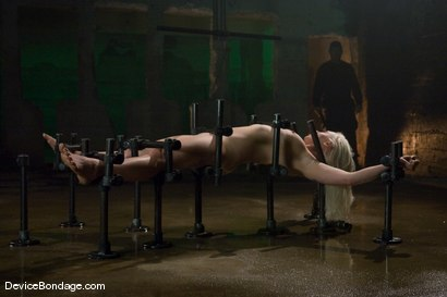 Photo number 5 from Lorelei Lee<br>Water Works shot for Device Bondage on Kink.com. Featuring Lorelei Lee in hardcore BDSM & Fetish porn.