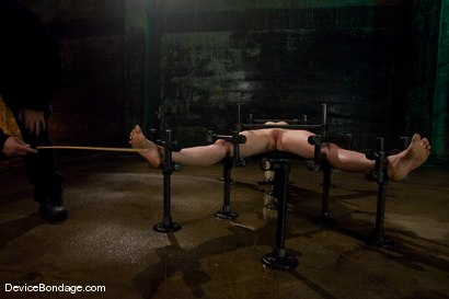 Photo number 6 from Lorelei Lee<br>Water Works shot for Device Bondage on Kink.com. Featuring Lorelei Lee in hardcore BDSM & Fetish porn.