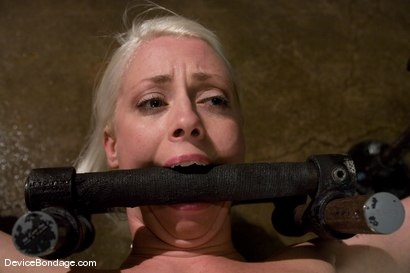 Photo number 7 from Lorelei Lee<br>Water Works shot for Device Bondage on Kink.com. Featuring Lorelei Lee in hardcore BDSM & Fetish porn.