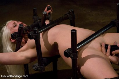 Photo number 9 from Lorelei Lee<br>Water Works shot for Device Bondage on Kink.com. Featuring Lorelei Lee in hardcore BDSM & Fetish porn.