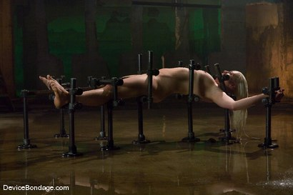Photo number 14 from Lorelei Lee<br>Water Works shot for Device Bondage on Kink.com. Featuring Lorelei Lee in hardcore BDSM & Fetish porn.