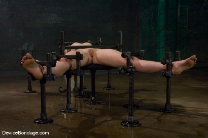 Photo number 4 from Lorelei Lee<br>Water Works shot for Device Bondage on Kink.com. Featuring Lorelei Lee in hardcore BDSM & Fetish porn.