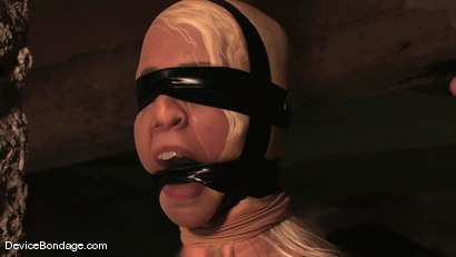 Photo number 6 from Lorelei Lee<br>Sensory overload. shot for Device Bondage on Kink.com. Featuring Lorelei Lee in hardcore BDSM & Fetish porn.