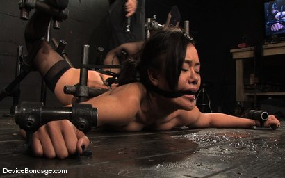 Photo number 12 from Ariel X, Annie Cruz Part 3 of 4 of the March Live Feed shot for Device Bondage on Kink.com. Featuring Ariel X, Annie Cruz and Isis Love in hardcore BDSM & Fetish porn.