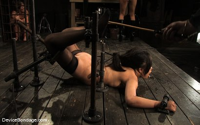 Photo number 8 from Ariel X, Annie Cruz Part 3 of 4 of the March Live Feed shot for Device Bondage on Kink.com. Featuring Ariel X, Annie Cruz and Isis Love in hardcore BDSM & Fetish porn.