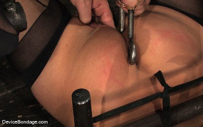 Photo number 15 from Ariel X, Annie Cruz Part 3 of 4 of the March Live Feed shot for Device Bondage on Kink.com. Featuring Ariel X, Annie Cruz and Isis Love in hardcore BDSM & Fetish porn.