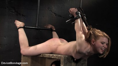 Photo number 13 from Madison, Sindee Jennings and Isis Love<br> Part 3 of 4 of the April live feed. shot for Device Bondage on Kink.com. Featuring Madison Young, Isis Love and Sindee Jennings in hardcore BDSM & Fetish porn.