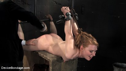 Photo number 8 from Madison, Sindee Jennings and Isis Love<br> Part 3 of 4 of the April live feed. shot for Device Bondage on Kink.com. Featuring Madison Young, Isis Love and Sindee Jennings in hardcore BDSM & Fetish porn.