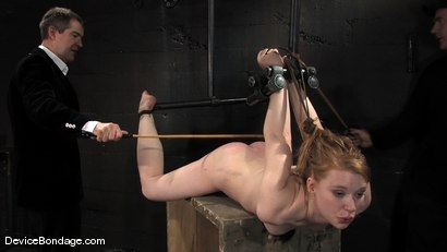 Photo number 9 from Madison, Sindee Jennings and Isis Love<br> Part 3 of 4 of the April live feed. shot for Device Bondage on Kink.com. Featuring Madison Young, Isis Love and Sindee Jennings in hardcore BDSM & Fetish porn.