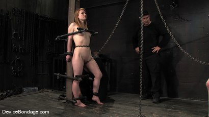 Photo number 4 from Madison, Sindee Jennings and Isis Love   Part 4 of 4 of the April live feed. shot for Device Bondage on Kink.com. Featuring Madison Young, Isis Love and Sindee Jennings in hardcore BDSM & Fetish porn.