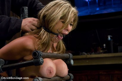 Photo number 3 from Felony<br> The Mom next door. shot for Device Bondage on Kink.com. Featuring Felony in hardcore BDSM & Fetish porn.