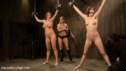 Photo number 11 from Dana DeArmond, Nika Noire and Ariel X <br>Part 3 of 4 of the May Live Feed shot for Device Bondage on Kink.com. Featuring Nika Noire, Ariel X and Dana DeArmond in hardcore BDSM & Fetish porn.