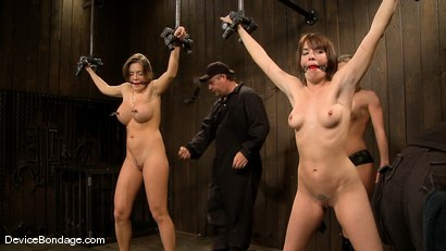 Photo number 13 from Dana DeArmond, Nika Noire and Ariel X <br>Part 3 of 4 of the May Live Feed shot for Device Bondage on Kink.com. Featuring Nika Noire, Ariel X and Dana DeArmond in hardcore BDSM & Fetish porn.