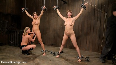 Photo number 15 from Dana DeArmond, Nika Noire and Ariel X <br>Part 3 of 4 of the May Live Feed shot for Device Bondage on Kink.com. Featuring Nika Noire, Ariel X and Dana DeArmond in hardcore BDSM & Fetish porn.