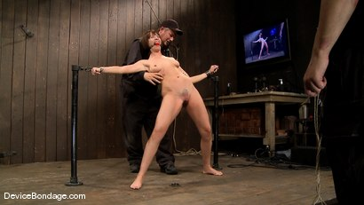 Photo number 1 from Dana DeArmond, Nika Noire and Ariel X<br> Part 4 of 4 of the May Live Feed shot for Device Bondage on Kink.com. Featuring Nika Noire, Ariel X and Dana DeArmond in hardcore BDSM & Fetish porn.