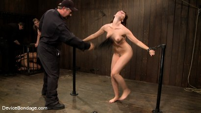 Photo number 3 from Dana DeArmond, Nika Noire and Ariel X<br> Part 4 of 4 of the May Live Feed shot for Device Bondage on Kink.com. Featuring Nika Noire, Ariel X and Dana DeArmond in hardcore BDSM & Fetish porn.