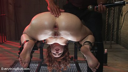Photo number 11 from Trinity is back for more water & deep ass fucking... shot for Everything Butt on Kink.com. Featuring Trinity Post and Lobo in hardcore BDSM & Fetish porn.