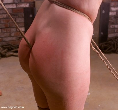 Photo number 8 from Paige Richards shot for Hogtied on Kink.com. Featuring Paige Richards in hardcore BDSM & Fetish porn.