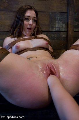 Photo number 14 from Savannah West: First time Fisted shot for Whipped Ass on Kink.com. Featuring Aiden Starr and Savannah West in hardcore BDSM & Fetish porn.
