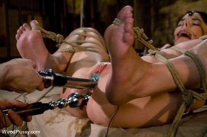 Photo number 12 from Dana DeArmond returns to Wiredpussy to be dominated by Claire Adams shot for Wired Pussy on Kink.com. Featuring Claire Adams and Dana DeArmond in hardcore BDSM & Fetish porn.