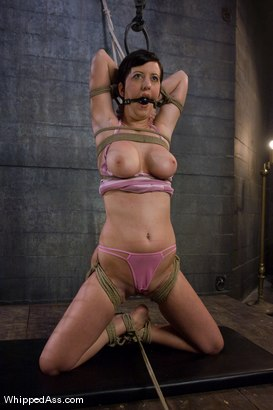 Photo number 2 from Cherry Suspended shot for Whipped Ass on Kink.com. Featuring Claire Adams and Cherry Torn in hardcore BDSM & Fetish porn.