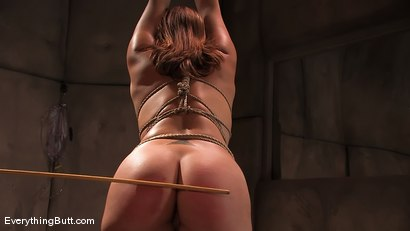 Photo number 12 from TEN: Plump Ass Ready for some pain... shot for Everything Butt on Kink.com. Featuring Ten in hardcore BDSM & Fetish porn.