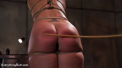 Photo number 13 from TEN: Plump Ass Ready for some pain... shot for Everything Butt on Kink.com. Featuring Ten in hardcore BDSM & Fetish porn.