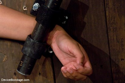 Photo number 4 from Leah<br>One of S.F.'s hottest lesbians!<br> Wait, what? shot for Device Bondage on Kink.com. Featuring Leah in hardcore BDSM & Fetish porn.