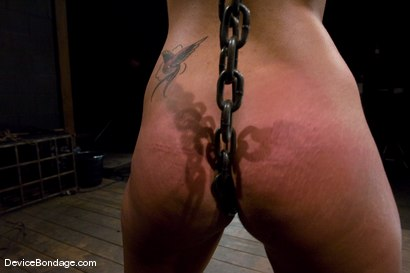 Photo number 12 from Leah<br>The Zipper shot for Device Bondage on Kink.com. Featuring Leah in hardcore BDSM & Fetish porn.