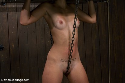 Photo number 6 from Leah<br>The Zipper shot for Device Bondage on Kink.com. Featuring Leah in hardcore BDSM & Fetish porn.