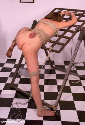 Photo number 9 from Dusty shot for Hogtied on Kink.com. Featuring Dusty in hardcore BDSM & Fetish porn.