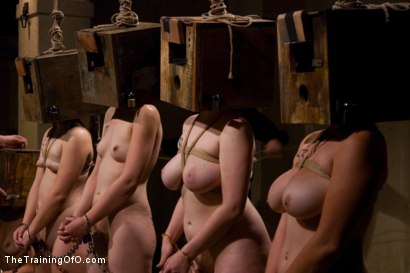 Photo number 11 from The Auditons Part Three shot for thetrainingofo on Kink.com. Featuring Bella Rossi, Cherry Torn, Maestro, Peter, Maggie Mayhem, Nerine Mechanique, Sasha Lexing, Sarah Shevon and Savannah West in hardcore BDSM & Fetish porn.