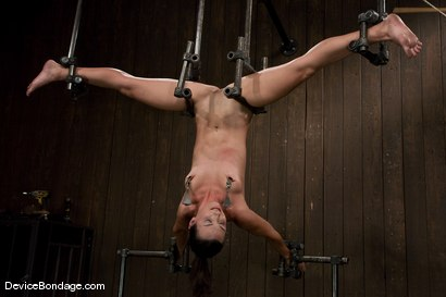Photo number 6 from Wenona<br> What would you do to her if you had 1 hour? shot for Device Bondage on Kink.com. Featuring Wenona in hardcore BDSM & Fetish porn.