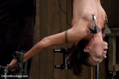 Photo number 8 from Wenona<br> What would you do to her if you had 1 hour? shot for Device Bondage on Kink.com. Featuring Wenona in hardcore BDSM & Fetish porn.