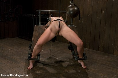 Photo number 14 from Wenona<br>former All-American Gymnast shot for Device Bondage on Kink.com. Featuring Wenona in hardcore BDSM & Fetish porn.