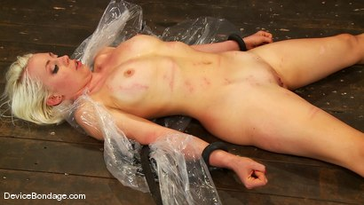 Photo number 14 from Jade Indica, Lorelei Lee and Sexy Jade <br>Part 2 of 4 of the June Live Feed shot for Device Bondage on Kink.com. Featuring Lorelei Lee, Miss Jade Indica and Sexy Jade in hardcore BDSM & Fetish porn.