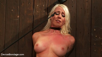 Photo number 4 from Jade Indica, Lorelei Lee and Sexy Jade <br>Part 2 of 4 of the June Live Feed shot for Device Bondage on Kink.com. Featuring Lorelei Lee, Miss Jade Indica and Sexy Jade in hardcore BDSM & Fetish porn.