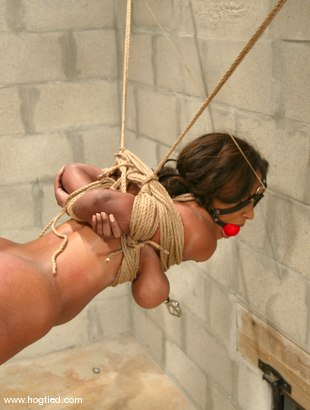 Photo number 6 from Sinnamon Love shot for Hogtied on Kink.com. Featuring Sinnamon Love in hardcore BDSM & Fetish porn.
