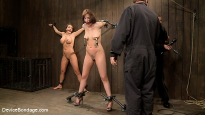 Photo number 4 from Dana DeArmond, Nika Noire and Ariel X<br>Part 1 of 4 of the May Live Feed shot for Device Bondage on Kink.com. Featuring Ariel X, Nika Noire and Dana DeArmond in hardcore BDSM & Fetish porn.