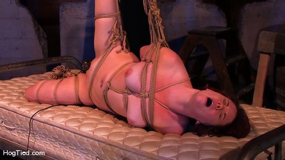 Photo number 12 from Lilla Katt:  She loves some Pain with her Pleasure shot for Hogtied on Kink.com. Featuring Lilla Katt in hardcore BDSM & Fetish porn.
