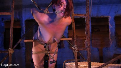 Photo number 14 from Lilla Katt:  She loves some Pain with her Pleasure shot for Hogtied on Kink.com. Featuring Lilla Katt in hardcore BDSM & Fetish porn.