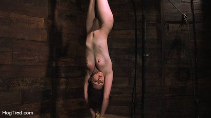 Photo number 1 from Carmen... Anal Whore with a flair shot for Hogtied on Kink.com. Featuring Carmen Stark in hardcore BDSM & Fetish porn.