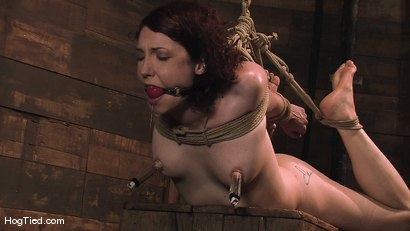 Photo number 13 from Carmen... Anal Whore with a flair shot for Hogtied on Kink.com. Featuring Carmen Stark in hardcore BDSM & Fetish porn.