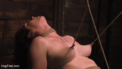 Photo number 9 from Carmen... Anal Whore with a flair shot for Hogtied on Kink.com. Featuring Carmen Stark in hardcore BDSM & Fetish porn.