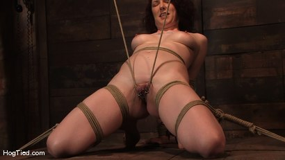 Photo number 4 from Carmen... Anal Whore with a flair shot for Hogtied on Kink.com. Featuring Carmen Stark in hardcore BDSM & Fetish porn.