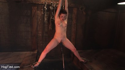 Photo number 4 from Kimberee Cline: Trades pain for pleasure just to Cum! shot for Hogtied on Kink.com. Featuring Kimberlee Cline in hardcore BDSM & Fetish porn.